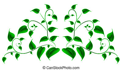 Green leaf - Vector illustration of Green leaf
