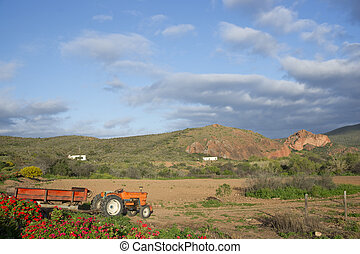 Red Mountain Farm - Old tractor on a farm in the Oudtshoorn...
