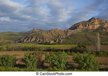 Red Mountain Farm - Farm in the Oudtshoorn region of the...