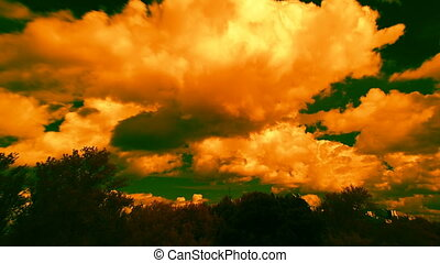 orange clouds, trees and green sky