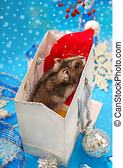 christmas coming - sweet little hamster in paper gift bag...