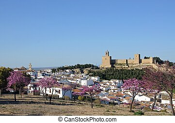 Town and fortress, Antequera - Castle fortress with pink...