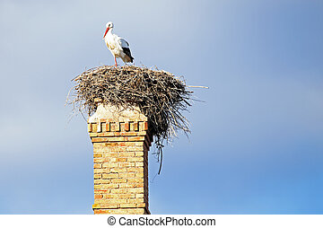 Nest with a stork on top of an abandoned factory chimney.