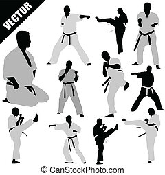 Karate fighters silhouettes - Various karate poses of...