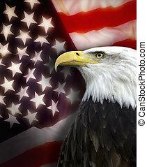 unido, estados, América, -, patriotismo