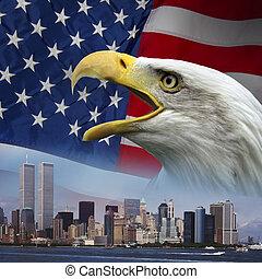 nuevo, York, -, recordar, 9-11