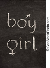 boy and girl words with gender symbols on blackboard - boy...