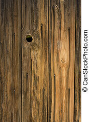 weathered wood of old barn wall with nails, staple and...