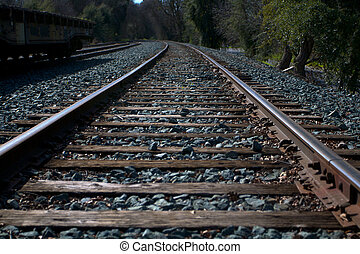 Miller Park Railroad Tracks Off into the Dark Woods -...