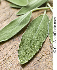 Sage leaves on chopping board