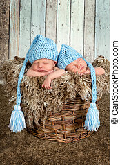 Baby basket with twins - Ten days old newborn twin babies...