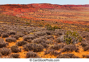 Painted Desert Colorful Yellow Grass Lands Orange Sandstone Red Hills Windows Section Arches National Park Moab Utah USA Southwest.