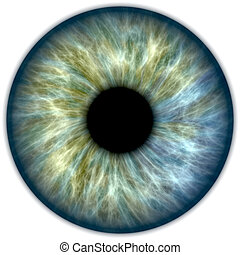 Blue green iris - Illustration of a blue and green human...