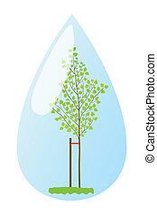 Young plant birch in water drop vector background ecology...