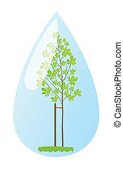 Young plant chestnut tree in water drop vector background...