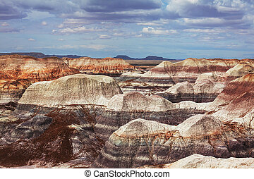 Petrified forest - Petrified Forest National Park, Arizona.