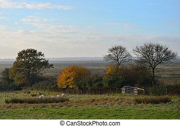 Autumn England