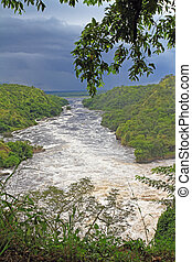 The Nile River Downstream from Murchsion Falls - Looking...