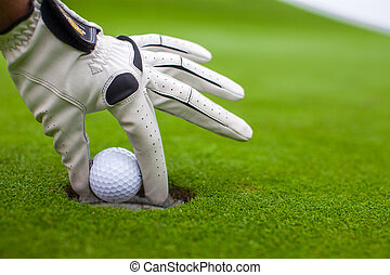 Man's hand putting a golf ball into hole on the green field...