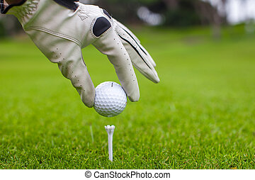Close-up of man's Hand hold golf ball with tee on course