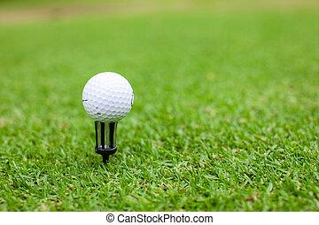 Golf ball on tee in a beautiful green golf grass