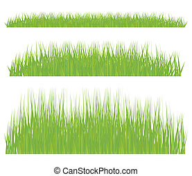 Green grass vector background