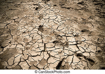 Cracked riverbed - cracked clay ground into the dry season