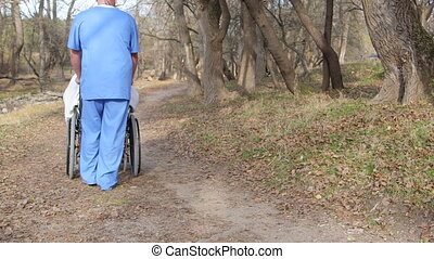 senior woman in wheelchair - Male nurse pushing senior woman...