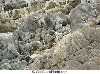 rock formation - detail of a rock formation in Brittany,...