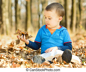 Little boy is reading book while sitting on yellow leaves...