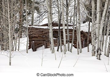 Ghost Cabin In Snow - An old abandoned wood log cabin...