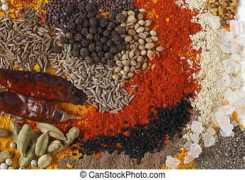 Curry spices rectangular