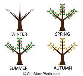 tree in four seasons