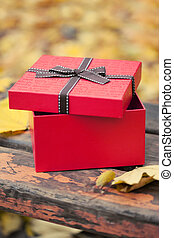 red gift box with bow on bench in autumn park