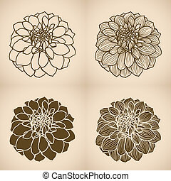 Hand drawn Dahlia flower, set of four styles. One color,...