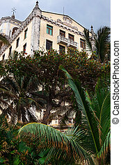 old hotel with palm