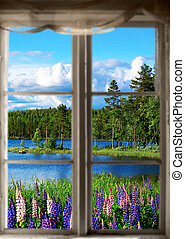 estate, paesaggio, scandinavo