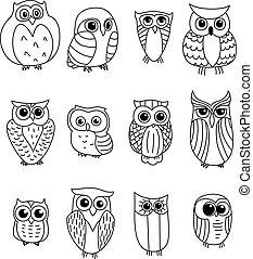 caricatura, corujas, owlets