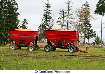 Corn harvest in tractor trailer bin - Corn harvest in red...