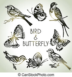 Bird and butterfly set, hand drawn illustrations