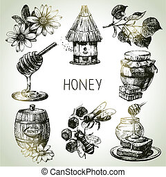 Honey set Hand drawn vintage illustrations