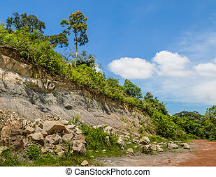 Rock landslide in the forest