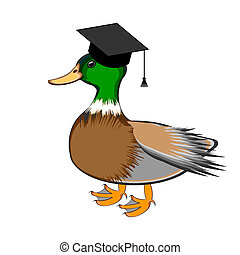A funny duck in a graduation cap. Vector-art illustration...