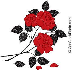 Flowers rose, silhouette