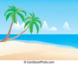 tropical beach. - Vector illustration of the tropical beach....