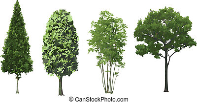 Set of trees isolated. Vector