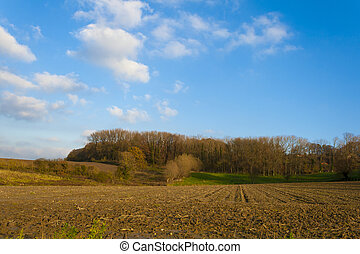 a beautiful autumn landscape in Flanders