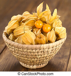 Physalis berry fruits (lat. Physalis peruviana) with husk in...