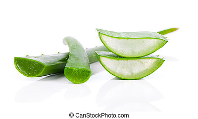 aloe vera fresh leaf isolated over white