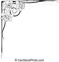 narcissus - vector border of narcissus in black and white...